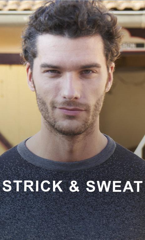 Strickpullover und Sweatshirts von Daniel Hechter